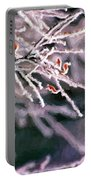 Frosty Twigs Portable Battery Charger