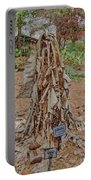 Frozen Banana Tree In Colored Pencil Portable Battery Charger