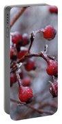Frozen Fruit Portable Battery Charger