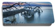 Frozen Morning 2 Portable Battery Charger
