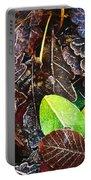 Frozen Oak Leaves, Glenveagh National Portable Battery Charger
