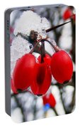 Frozen Red Berries Portable Battery Charger