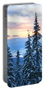 Frozen Reflection 2 Portable Battery Charger