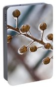 Frozen Seed Capsules In Time Portable Battery Charger