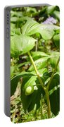 Fruit Of The Mayapple Portable Battery Charger