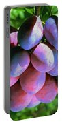 Fruit Plums  On Tree Portable Battery Charger