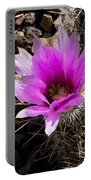 Fuchsia Cactus Blossom Portable Battery Charger