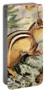 Fuertes, Louis Agassiz 1874-1927 - Burgess Animal Book For Children 1920 Striped Chipmunk Portable Battery Charger