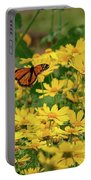 Funchal Maderia Monarch Portable Battery Charger