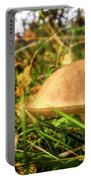 Funghi, Cashel Forest Portable Battery Charger