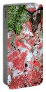 Fungus Amongst Us - Florida Palm Portable Battery Charger