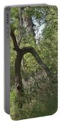 Funky Tree On Trail In Peters Canyon Portable Battery Charger