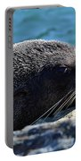Fur Seal Portable Battery Charger
