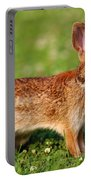 Furry Friend Portable Battery Charger
