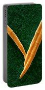 Fusarium Graminearum Spores Portable Battery Charger