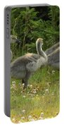 Fuzzy Fowlings Portable Battery Charger