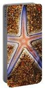 Galapagos Colorful Seastar Portable Battery Charger