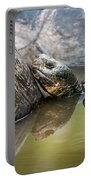 Galapagos Giant Tortoise In Pond Amongst Others Portable Battery Charger