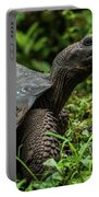 Galapagos Giant Tortoise In Profile In Woods Portable Battery Charger