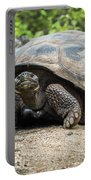 Galapagos Giant Tortoise Walking Down Gravel Path Portable Battery Charger