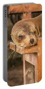 Galapagos Sea Lion Sleeping On Wooden Bench Portable Battery Charger