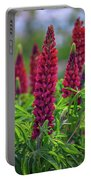 Gallery Red Lupines Portable Battery Charger
