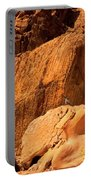 Gambels Quail In Profile Valley Of Fire Portable Battery Charger