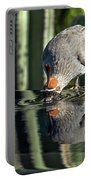 Gambel's Quail Male Portable Battery Charger