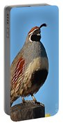 Gambel's Quail On Sunny Perch Portable Battery Charger