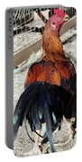 Gamefowl  Portable Battery Charger