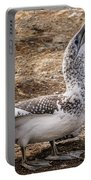 Gannet Chick 1 Portable Battery Charger