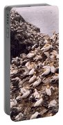 Gannet Cliffs Portable Battery Charger