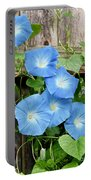 Garden Glories Portable Battery Charger