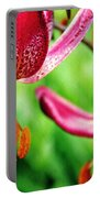 Garden Jewels 1 Portable Battery Charger