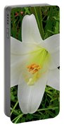 Garden Lily Posterized Background Portable Battery Charger