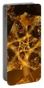Garden Of The Golden Orbs Portable Battery Charger by Ron Bissett