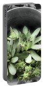 Garden Succulents Partial Color Portable Battery Charger