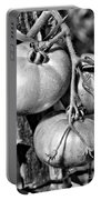 Garden Tomatoes In Black And White Portable Battery Charger