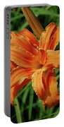 Garden With A Blooming Double Daylily Flowering Portable Battery Charger