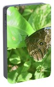 Garden With A Blue Morpho Butterfly With Wings Closed Portable Battery Charger