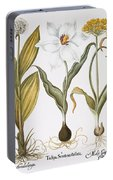 Garlic, 1613 Portable Battery Charger