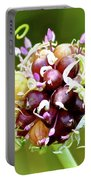Garlic Top Portable Battery Charger
