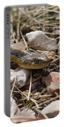 Garter Snake On The Trail In The Pike National Forest Of Colorad Portable Battery Charger