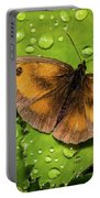 Gatekeeper Butterfly After The Rain. Portable Battery Charger