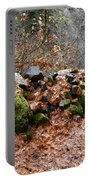 Gather No Moss Portable Battery Charger