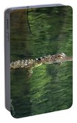 Gator In The Spring Portable Battery Charger