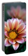 Gazania Petals Vii Portable Battery Charger