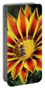 Gazania With Insect Portable Battery Charger
