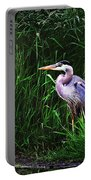Gbh In The Grass Portable Battery Charger