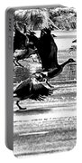 Geese On Ice Taking Flight Portable Battery Charger